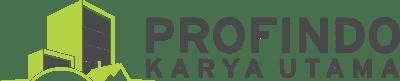 Profindo Logo